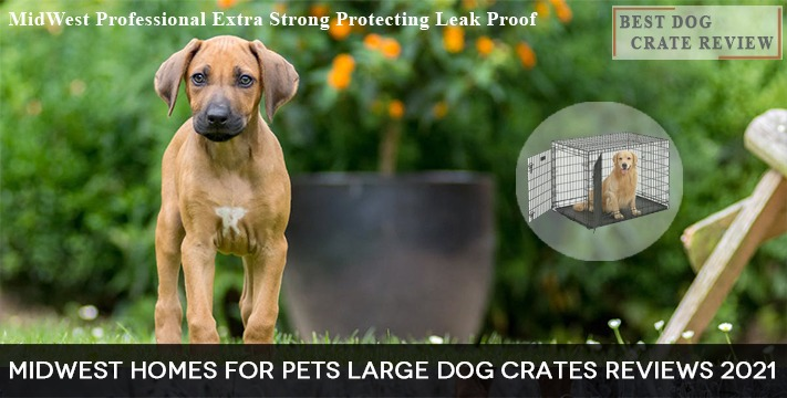 MidWest Homes Dog Crates for Pets Large Sizes Reviews 2021